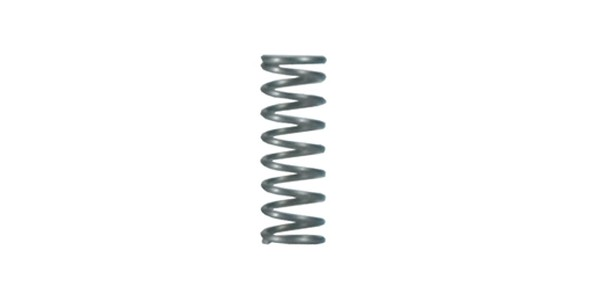Bolt Catch Plunger Spring